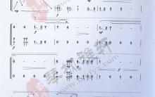 《林冲夜奔》|古筝考级曲谱(十级)